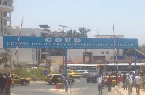 Article : Haïti-Sénégal : Les boursiers haïtiens, auront-ils accès à un Master ?
